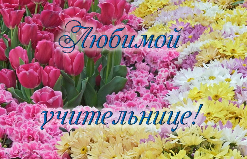 открытка - море цветов любимой учительнице