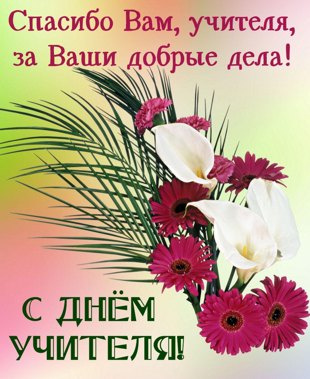 открытка - красивые цветы любимым учителям
