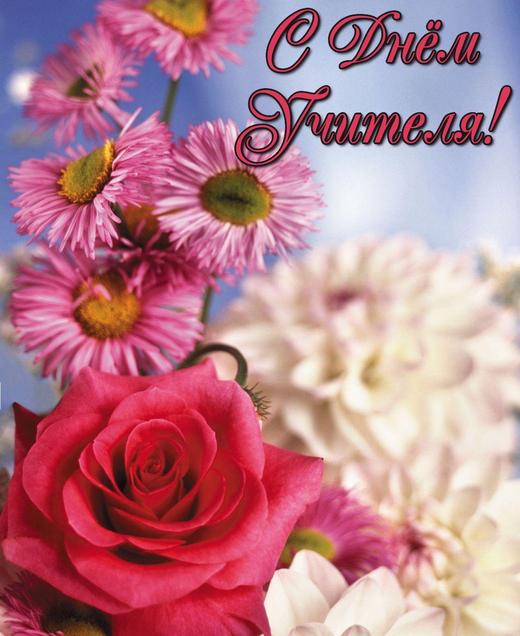 открытка - красивые цветы к Дню учителя