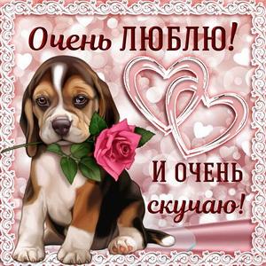 Картинка скучаю с собачкой и сердечками