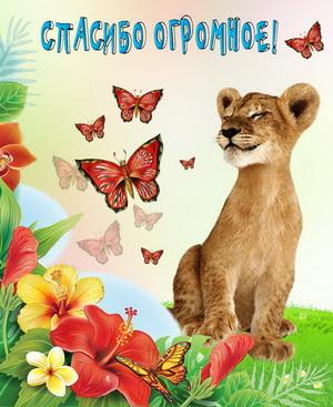 Львица на фоне цветов и бабочек