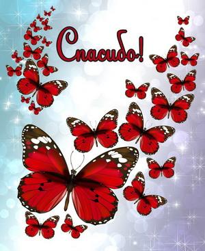 Открытка с красными бабочками