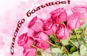 Красивый букет из розовых роз
