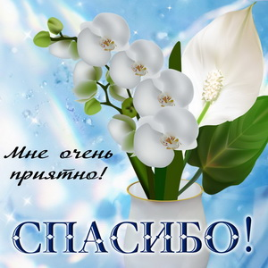 Спасибо! и белый цветок в вазе