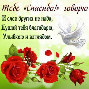 Открытка спасибо с голубем и розами