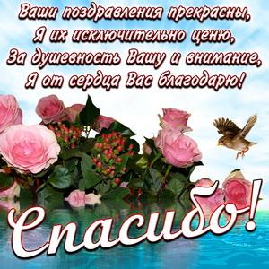 Открытка спасибо с розовыми розочками
