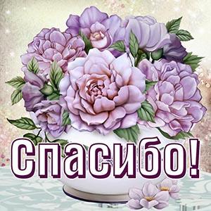 Милая картинка спасибо с сиреневыми цветами