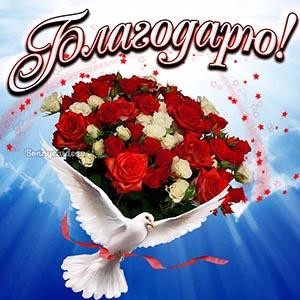Голубь с цветами на открытке благодарю
