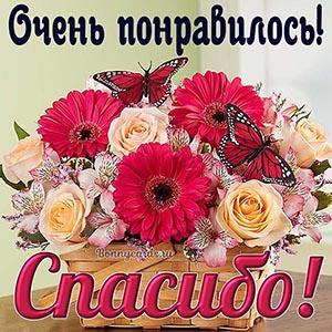 Картинка спасибо с цветами и бабочками