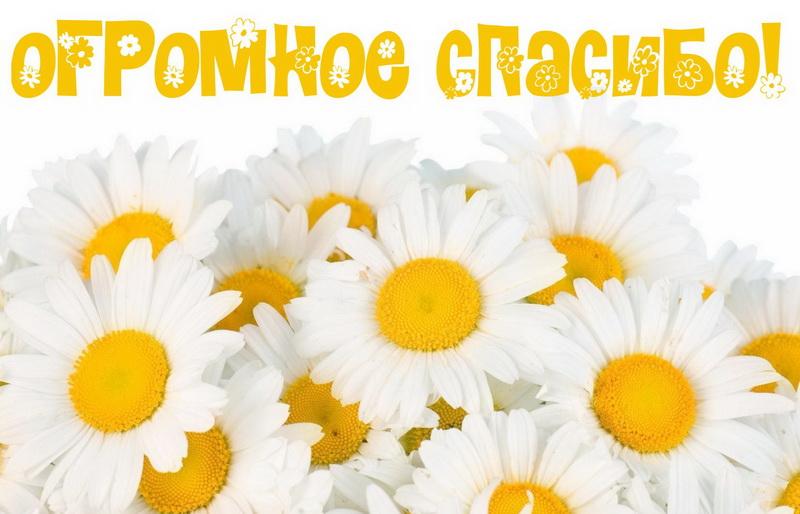 https://bonnycards.ru/images/spasibo/spasibo0009.jpg