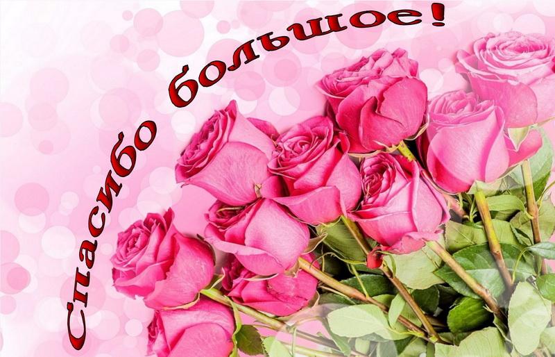 Открытка спасибо - красивый букет из розовых роз