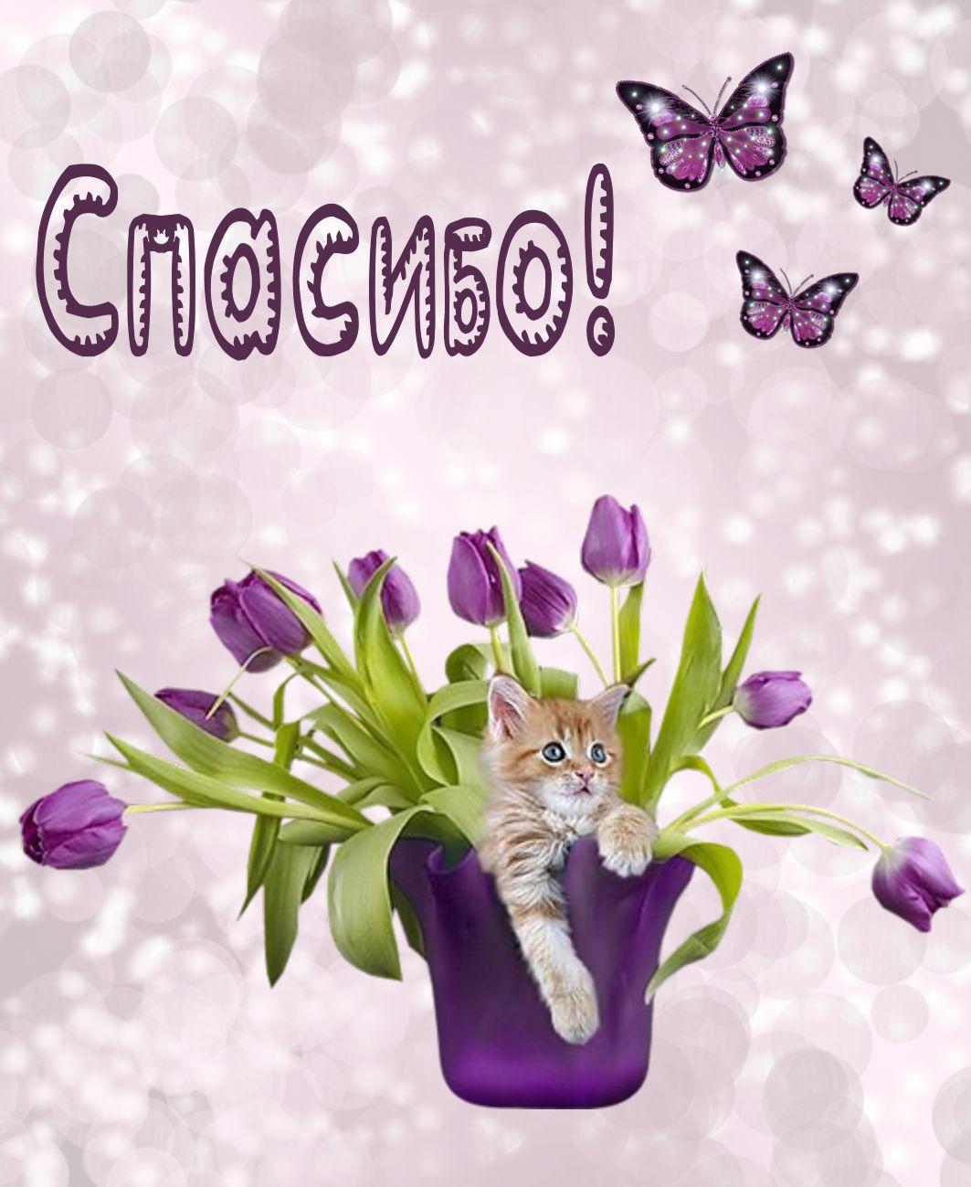 Открытка спасибо - котик в вазе с тюльпанами
