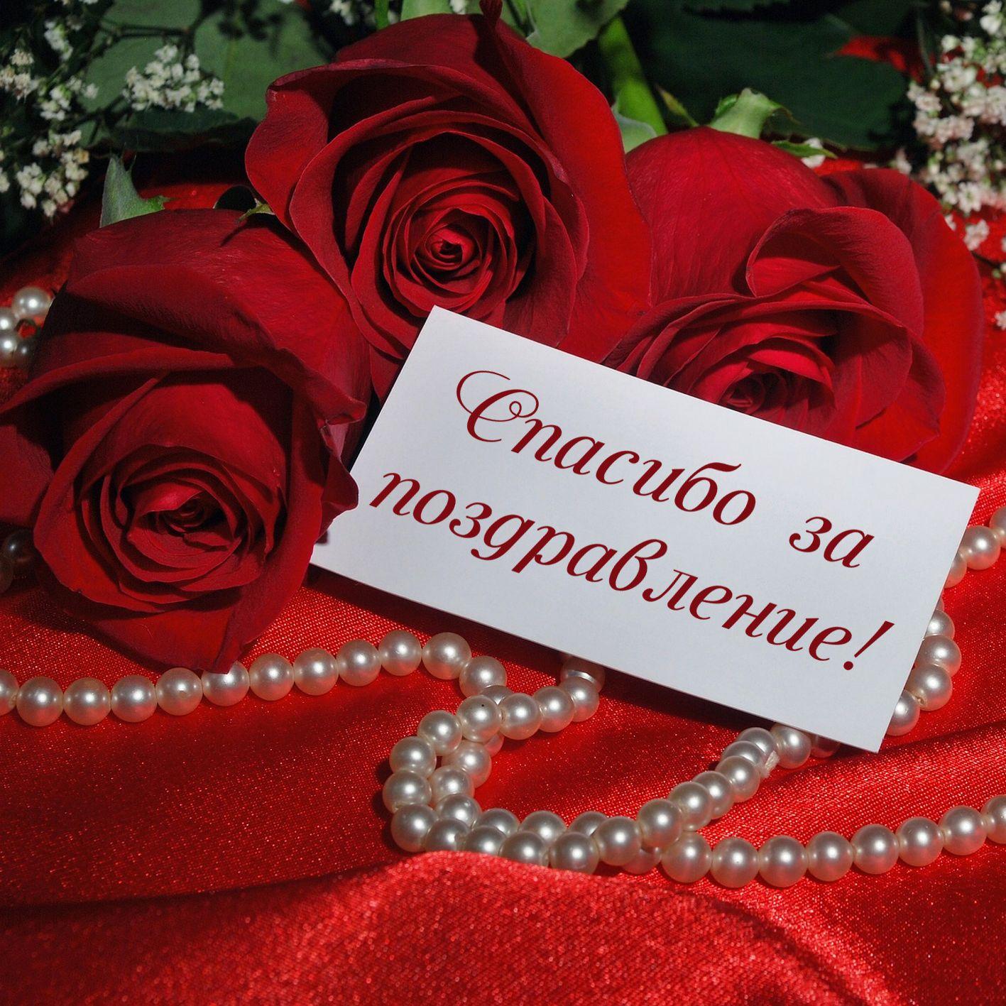 Для малыша, картинки роза с надписью спасибо