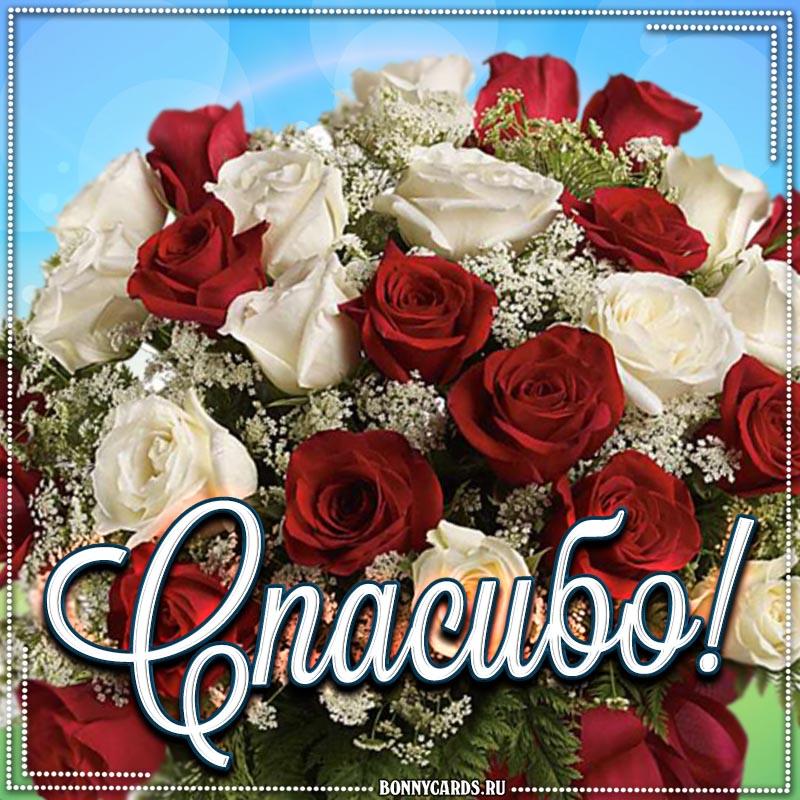 Замечательная открытка спасибо с розами