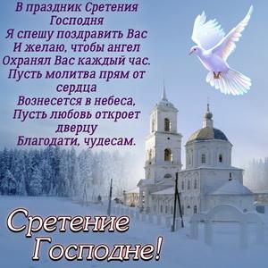 Картинка с голубем и пожеланием на Сретение