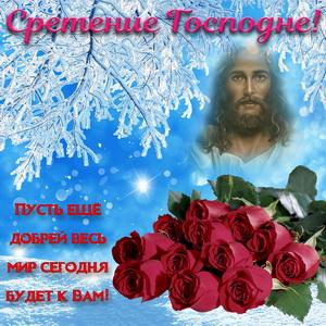 Картинка с розами на Сретение Господне