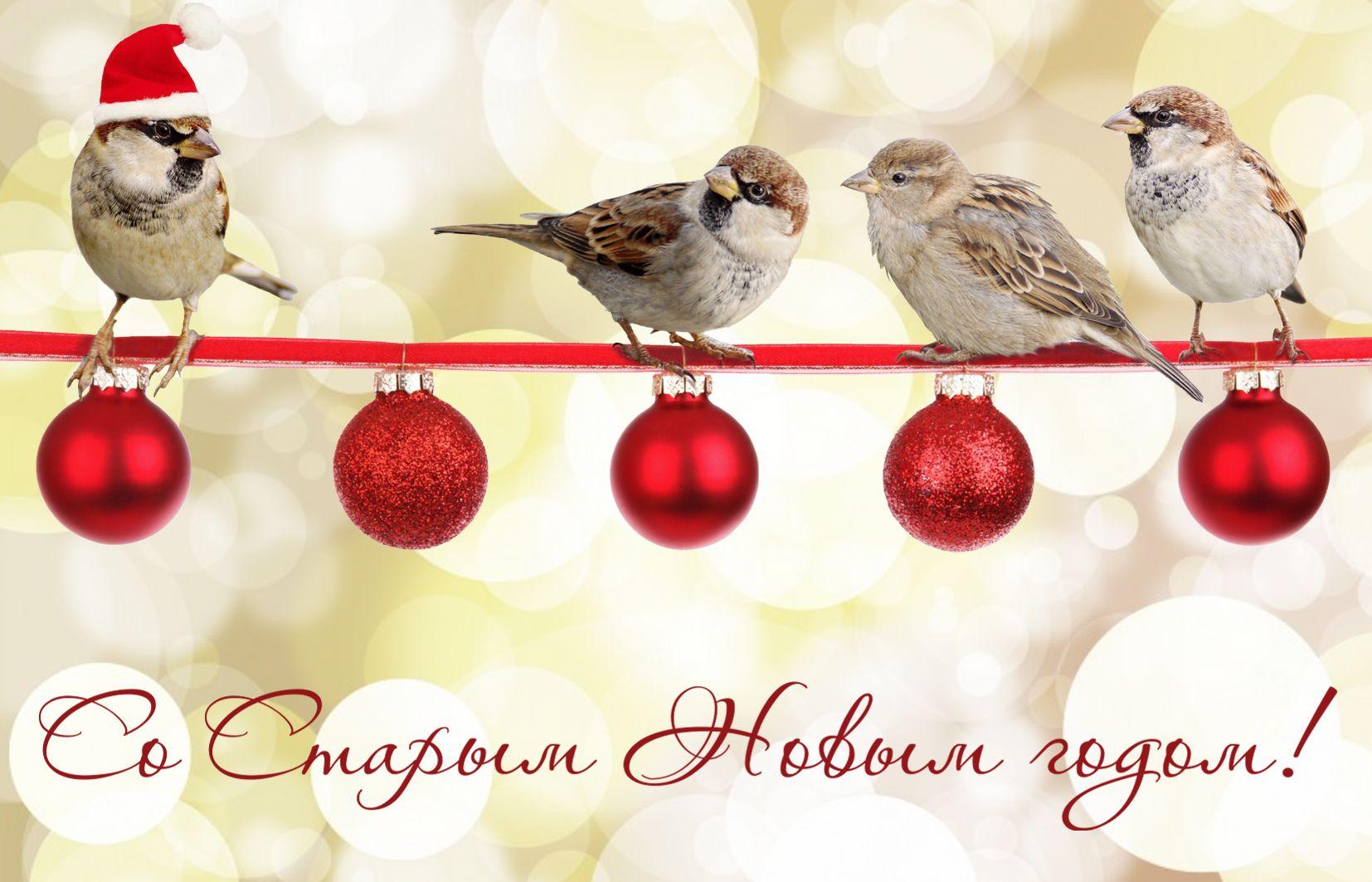Открытка со Старым Новым годом - птички на веточке с игрушками