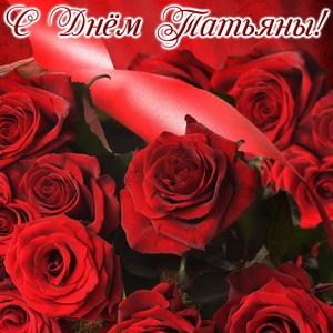 Розы на красном фоне на День Татьяны