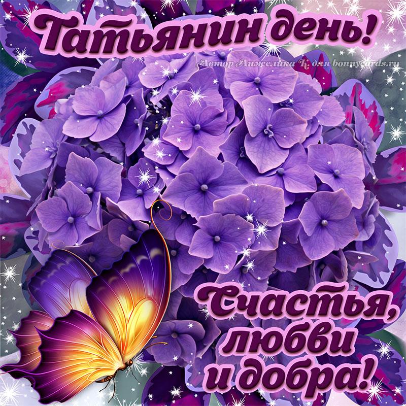 Яркая картинка на Татьянин день с цветами и бабочкой