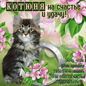Картинка с котом на счастье и удачу