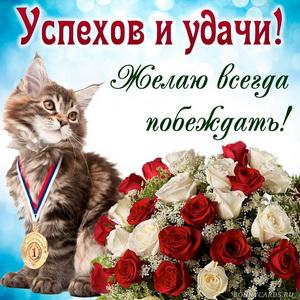 Картинка с букетом и котиком желающим успехов и удачи