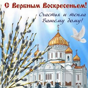 Верба и белый голубь на фоне собора