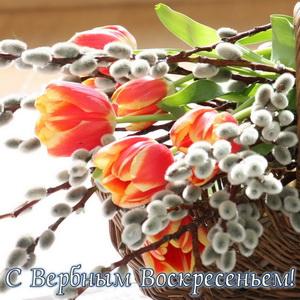 Красивые цветы на Вербное Воскресенье
