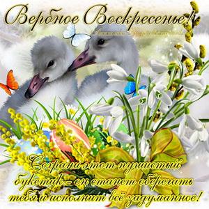 Открытка к Вербному воскресенью с птичками и цветами