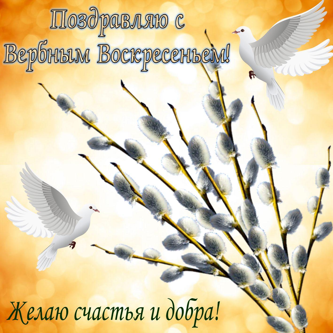 Поздравление с вербой и белыми голубями