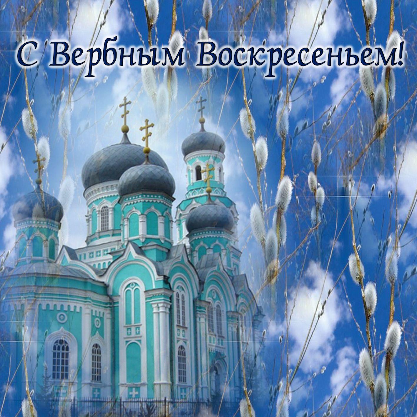 Верба на фоне церкви к Вербному Воскресенью
