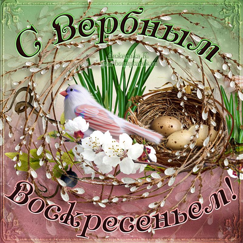 Милая открытка на Вербное воскресенье с птичкой у гнезда