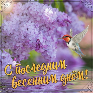 Картинка с птичкой в последний день весны