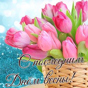 Картинка с последним днём весны с тюльпанами