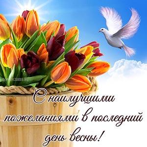 С наилучшими пожеланиями в последний день весны