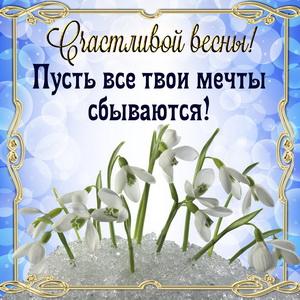 Подснежники и пожелание счастливой весны