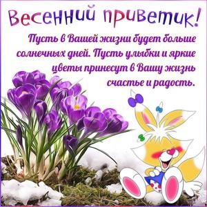 Весенний приветик на фоне первых цветочков