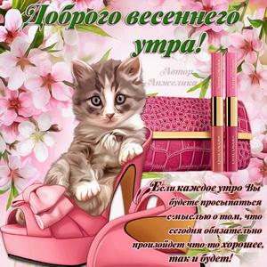 Милый котик желает Вам доброго весеннего утра