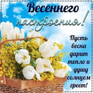 Картинка с цветами для весеннего настроения