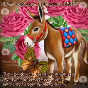 Открытка с осликом весной среди ярких розочек