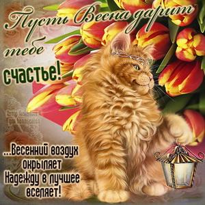 Красивый котик с фонарем весной среди тюльпанов
