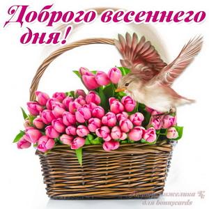 Открытка с корзиной ярких весенних тюльпанов