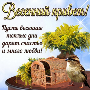 Открытка с весенним приветом от маленькой птички