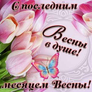 Открытка с тюльпанами и пожеланием весны в душе