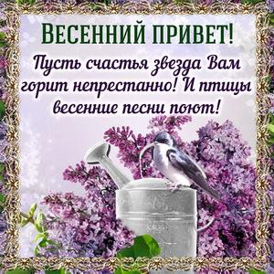 Картинка с птичкой передающей весенний привет