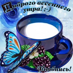 Картинка доброго весеннего утра с бабочкой