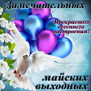 Картинка с голубем и шариками на майские выходные