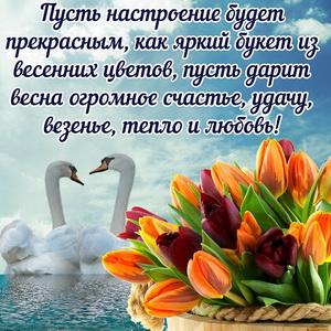 Весенние цветы и пара красивых лебедей на воде