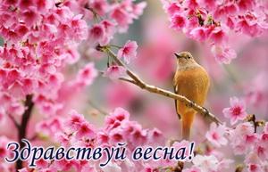 Птичка на ветке среди розовых цветов