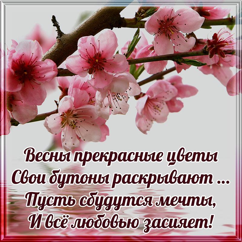 Открытка со стихами про весну и цветочками