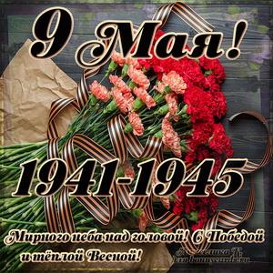 Открытка с гвоздиками и лентой на праздник 9 мая